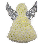 Angel from £119.90