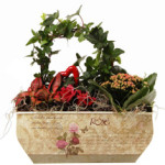 Decorative Valentines Planter