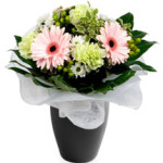 Florance from £24.90