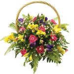 Fressia Basket from £34.90
