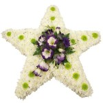 Lisianthus Star Cushion from £89.90
