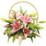Pink Lily Basket from £34.90