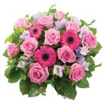 Rose & Gebera Posy from £44.90