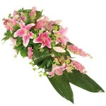 Seasonal Pink Lily Spray from £59.90