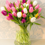 Simple Tulips from £19.90