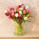 Simply Tulips from £19.90