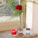 Single Red Rose & Vase