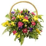 fressia flower basket from £29.90