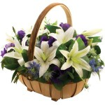white trug from £34.90