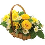 yellow trug from £29.90