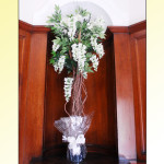 Wisteria Tree £20 to hire